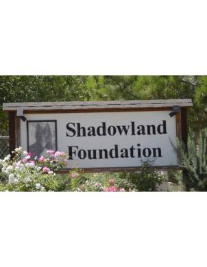 SHADOWLAND SIGN